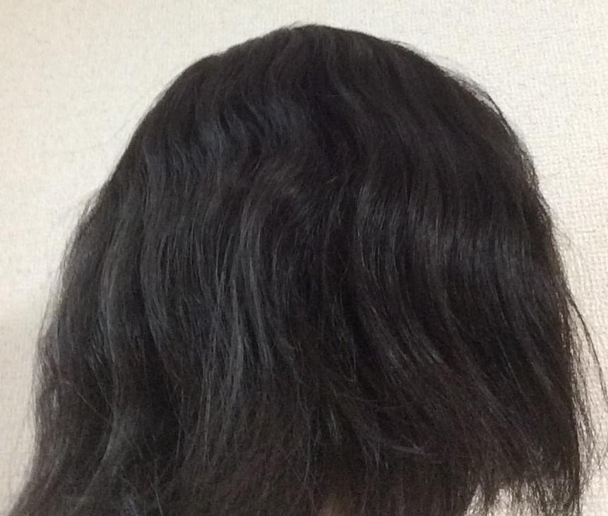f:id:shishi-book:20200514150417j:plain