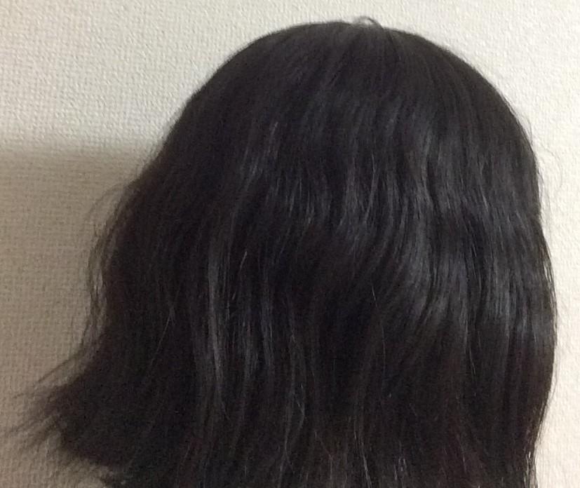 f:id:shishi-book:20200514151218j:plain