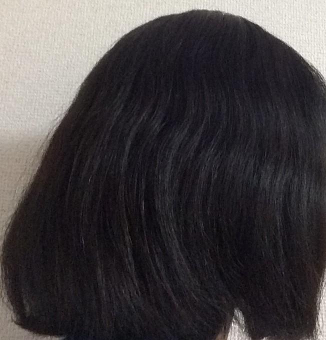 f:id:shishi-book:20200514152018j:plain