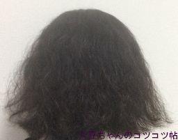 パンテーン(シャンプー)+フィーノ(ヘアマスク)使用後の髪(別の日に撮影)