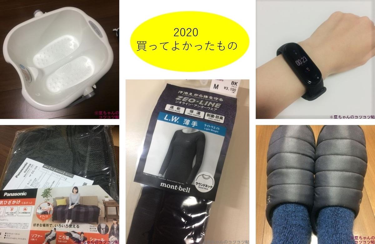 f:id:shishi-book:20210108232242j:plain