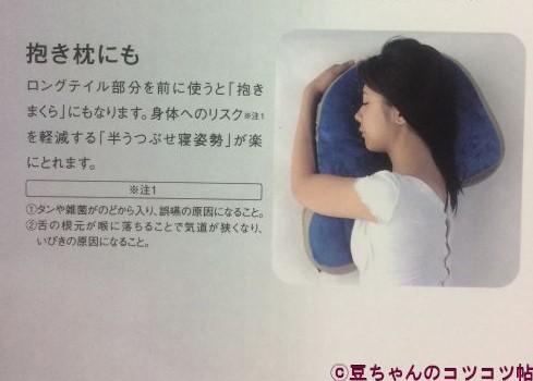 f:id:shishi-book:20210611215039j:plain