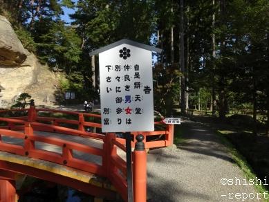 f:id:shishi-report:20181103221154j:plain