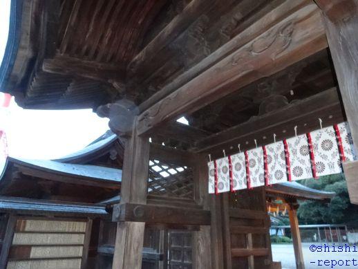 f:id:shishi-report:20181224131519j:plain