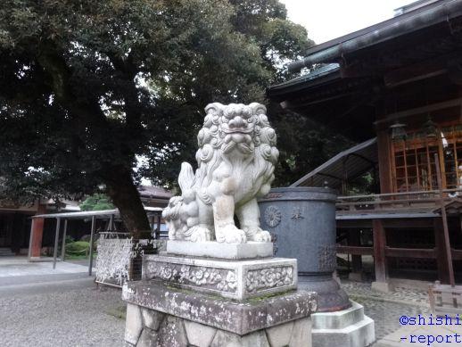 f:id:shishi-report:20181224132232j:plain
