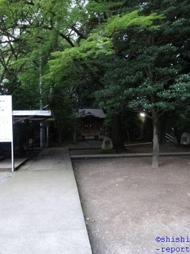 f:id:shishi-report:20181224134238j:plain