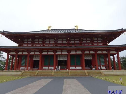 f:id:shishi-report:20190531142514j:plain