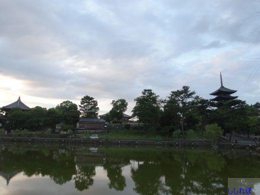 f:id:shishi-report:20190727003721j:plain