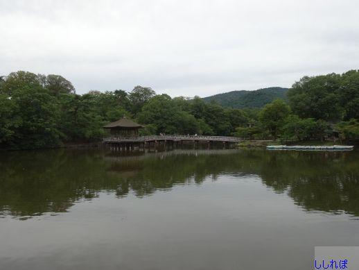 f:id:shishi-report:20190727154052j:plain