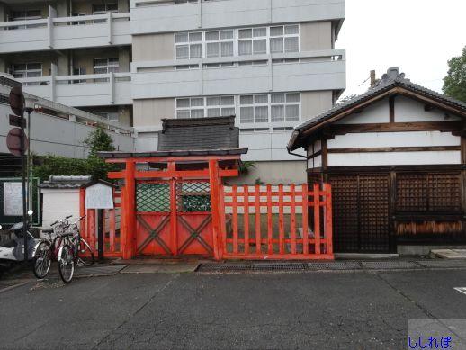f:id:shishi-report:20190727234204j:plain