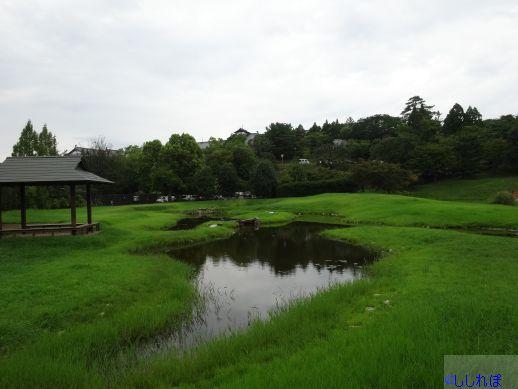 f:id:shishi-report:20190917155811j:plain