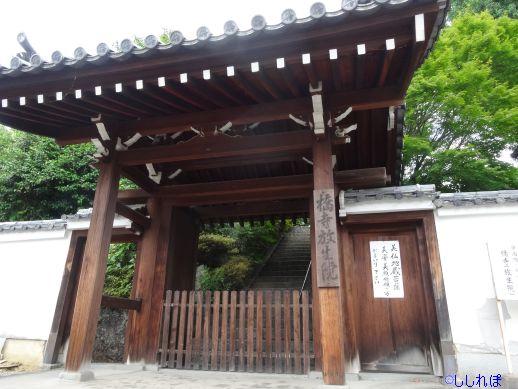 f:id:shishi-report:20191006130342j:plain