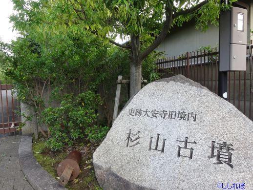 f:id:shishi-report:20200117134455j:plain