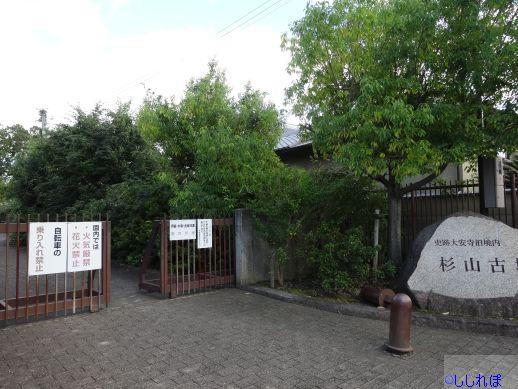 f:id:shishi-report:20200117135007j:plain