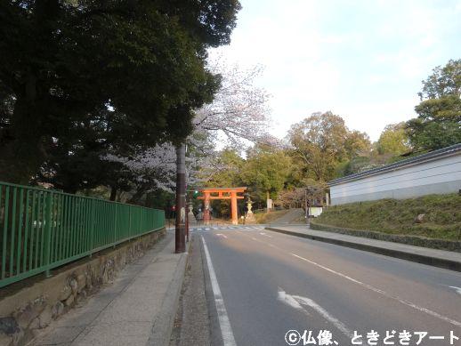 f:id:shishi-report:20200403003015j:plain