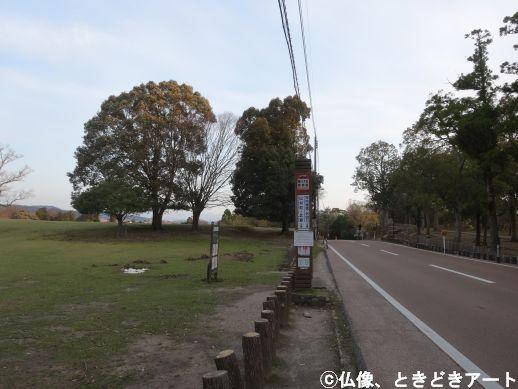 f:id:shishi-report:20200403005136j:plain