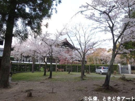 f:id:shishi-report:20200403153122j:plain
