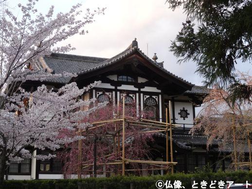f:id:shishi-report:20200403153221j:plain