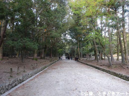 f:id:shishi-report:20200403154113j:plain