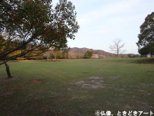 f:id:shishi-report:20200403155026j:plain