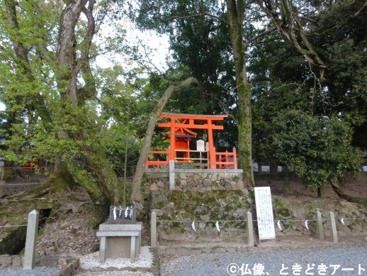 f:id:shishi-report:20200501133136j:plain