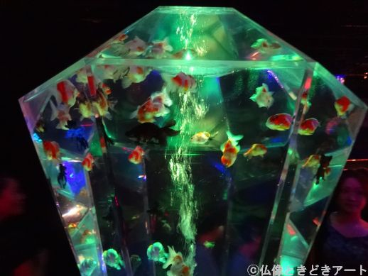 ダイヤモンドのような形の大きな水槽に金魚が泳いでいる画像