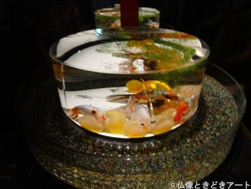 円形の水槽の底のほうに佇む丸っこい金魚の画像