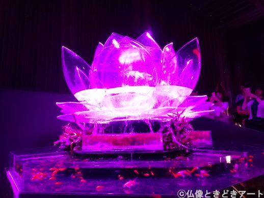 紫にライトアップされた蓮の花のような水槽
