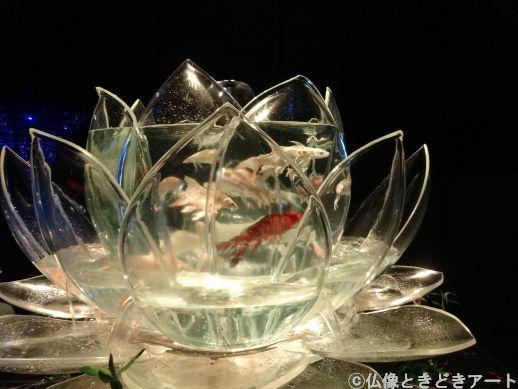 蓮の花のような水槽を泳ぐ金魚の画像