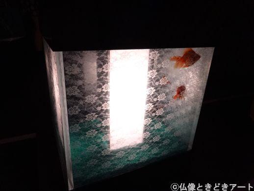 行燈のような形の水槽の画像