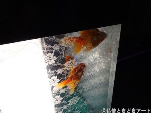 行燈のような形の水槽を泳ぐ金魚の画像