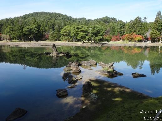 毛越寺浄土庭園の出島から大泉が池を撮影した画像