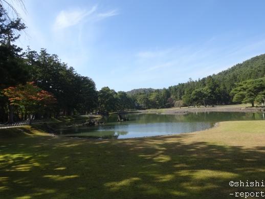 毛越寺大泉ヶ池の州浜~出島間を撮影した画像