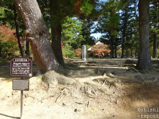 毛越寺の金堂円隆寺跡を撮影した画像