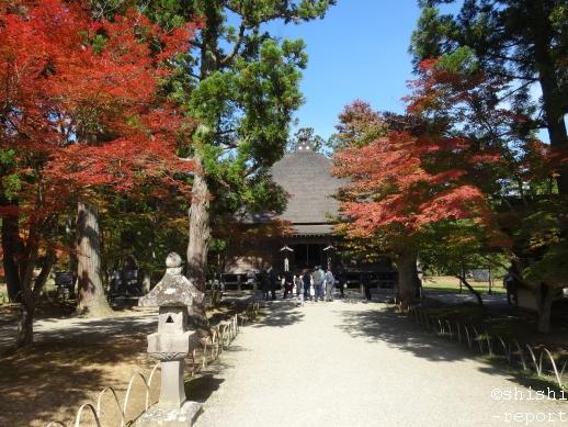 毛越寺常行堂を遠目に撮影した画像