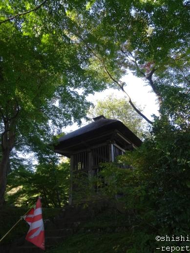 中尊寺鐘楼を遠目に撮影した画像