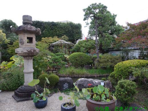 十輪院境内の池を撮影した画像