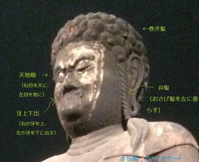 不動明王の頭部の写真に特徴を追記した画像