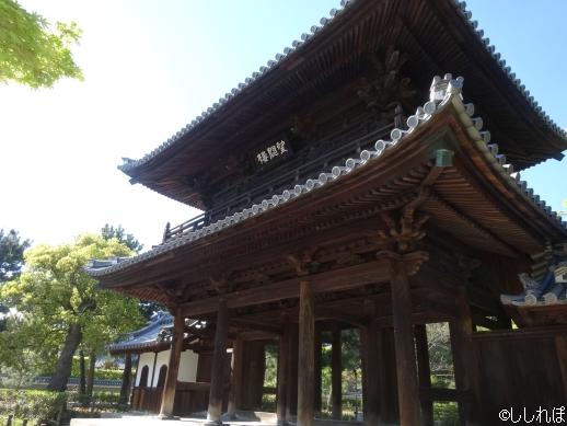 f:id:shishi-report:20210621173947j:plain