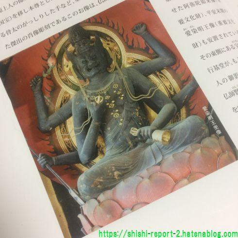 東大寺俊乗堂パンフレットの愛染明王の写真部分