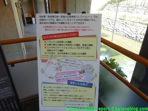 f:id:shishi-report:20210718134248j:plain