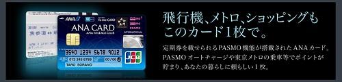 f:id:shishi-toh:20180109223443j:plain