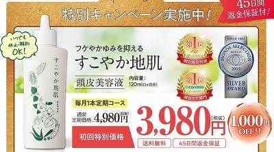 f:id:shishiokun:20180615020059j:plain