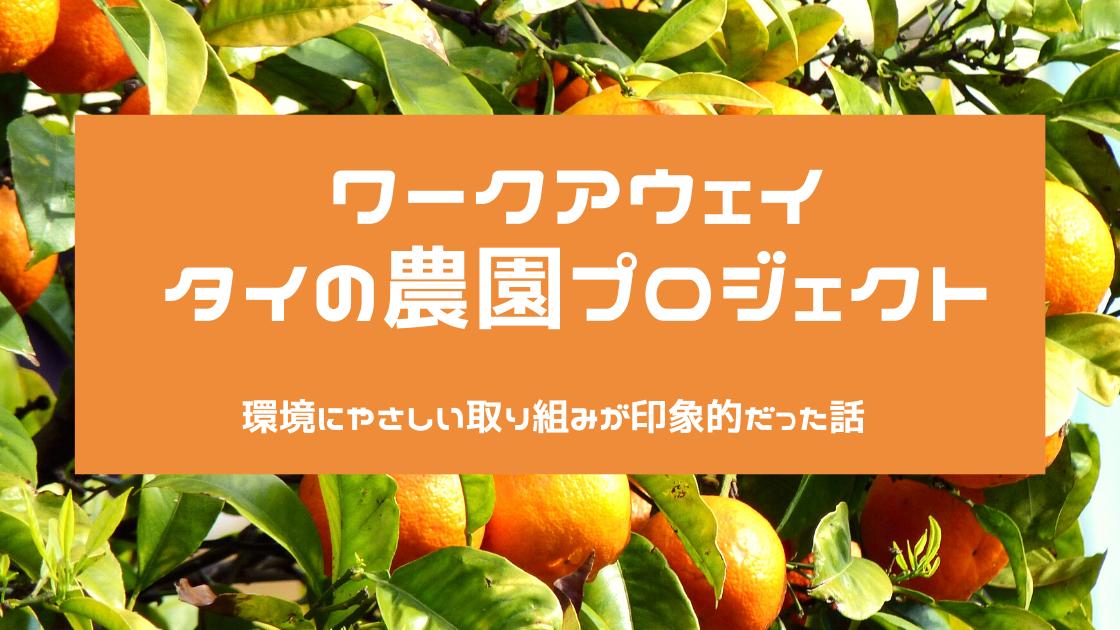 f:id:shitae:20200105204231p:plain