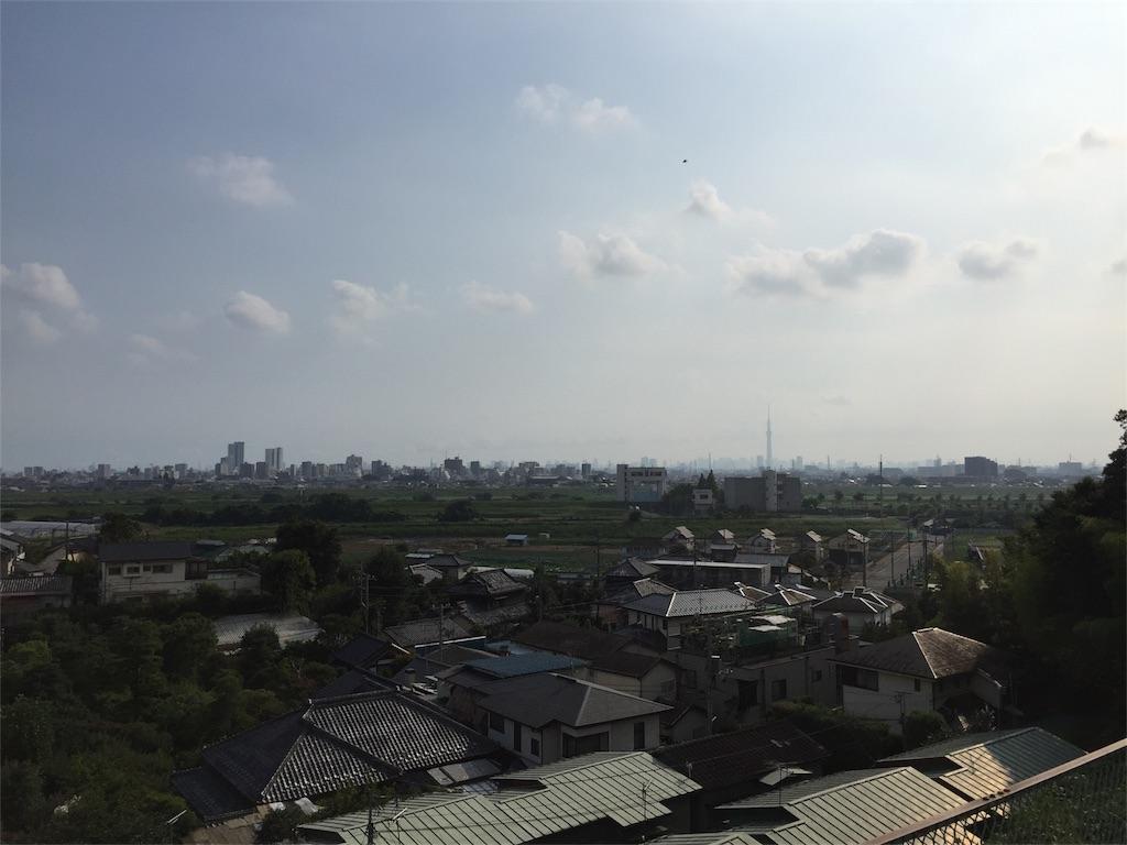 f:id:shitamachi-dog:20170811225017j:image