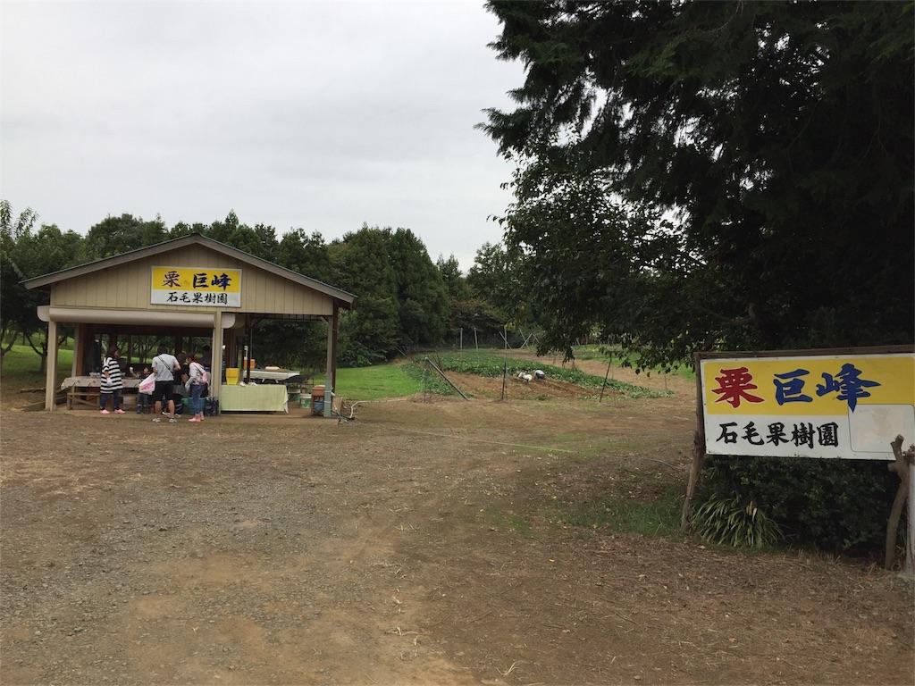 f:id:shitamachi-dog:20170922222743j:image