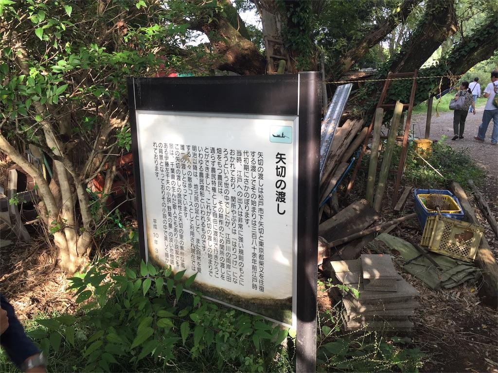 f:id:shitamachi-dog:20171009180641j:image
