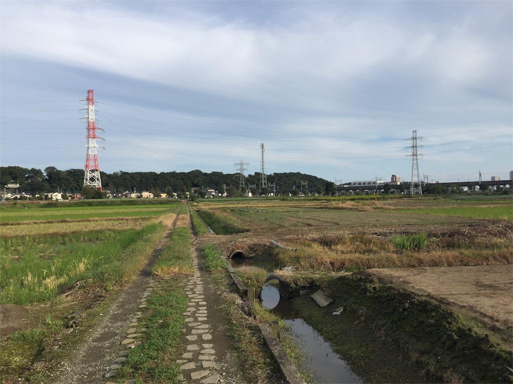 f:id:shitamachi-dog:20171009181204j:image