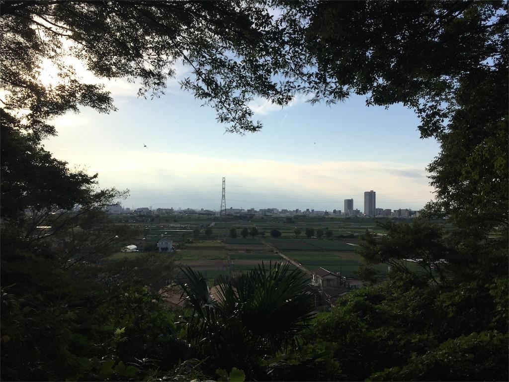 f:id:shitamachi-dog:20171009181901j:image