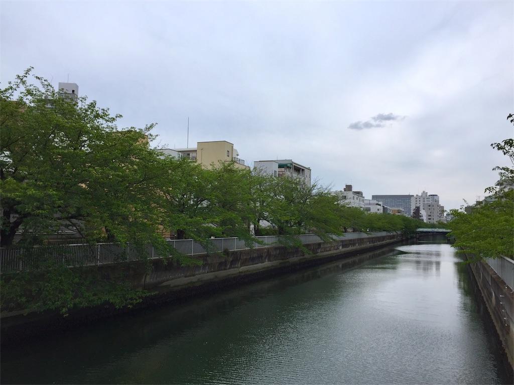 f:id:shitamachi-dog:20171105234106j:image